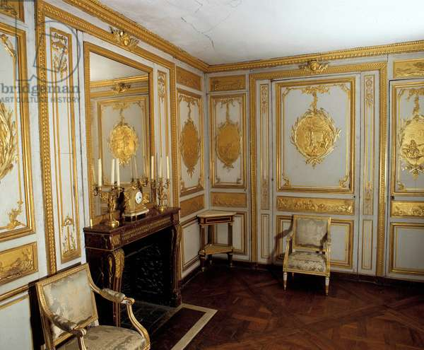 View of the Cabinet of Baths of King Louis XV (1710-1774) with woodwork made by the workshop of brothers Jules Antoine Rousseau (1710-1782). Versailles Castle