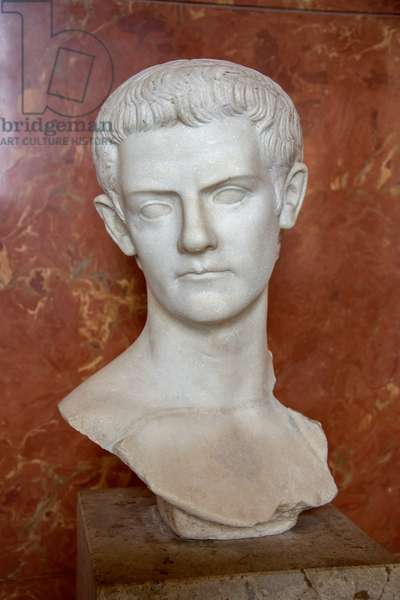 Art Rome Bust of the Emperor Caligula (12 - 41 AD) Marble