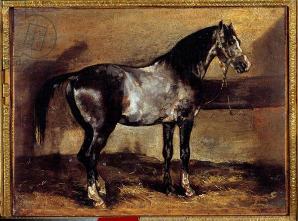 Grey Horse at the Ratelier Painting by Theodore Gericault (1791-1824) 19th century Sun. 0,26x0,34 m