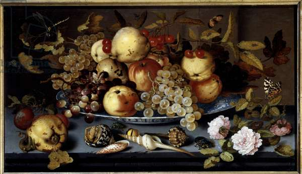 Still life of fruits, flowers, shells and insects. Painting by Balthasar Van Der Ast (1590-1656) Ec. Hol, 1623. Oil on wood. Dim: 0.37 x 0.65m. Lille, Museum of Fine Arts