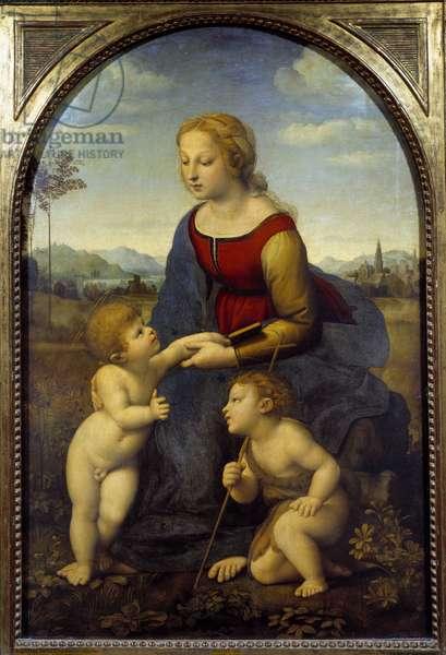The Virgin has a child with the little Saint John, or the beautiful gardener Painting by Raffaello Sanzio dit Raphael (1483-1520) 1507 Sun. 1,22x0,8 m