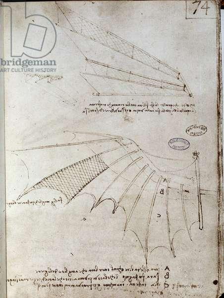 Wing. Flying machine drawing. Manuscript by Leonard De Vinci (Leonardo da Vinci, 1452-1519), 16th century. Paris, Library of the Institute