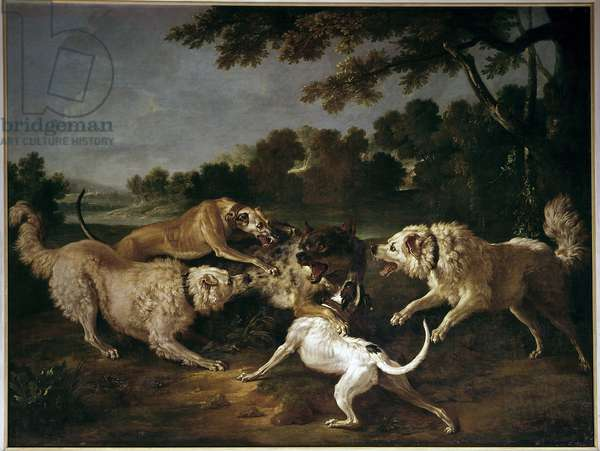 The Wolf Hunt Painting by Francois Desportes (1661-1743), 18th century. Gien, Musee de la Chasse