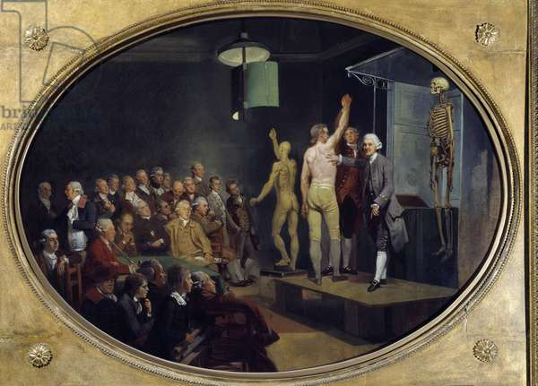 Lecture by William Hunter (1718-1783), Scottish anatomist at the Royal Academy. Painting by Johann Zoffany (1733-1810) Ec. Ang., 1772. Coll. Part. - William Hunter (1718-1783), Scottish physician, teaching anatomy at the Royal Academy. Painting by Johann Zoffany (1733-1810), English School, 1772. Private Collection