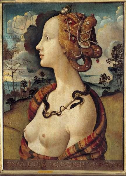 Portrait of a woman said of Simonetta Vespucci, 1480 (oil on canvas)