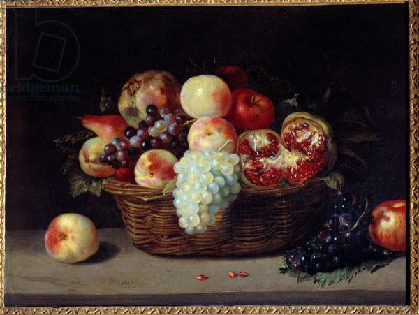 Basket of grenades, peaches and grapes Painting by Jacques Linard (1600-1645) 17th century Sun. 0,46x0,61 m Paris, Musee du Louvre