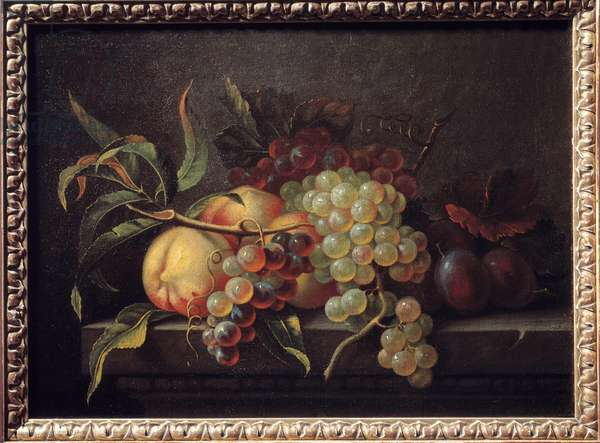 Fruits on a table. Painting by Pierre Dupuis (1610-1682), 17th century. Rouen, Museum of Fine Arts