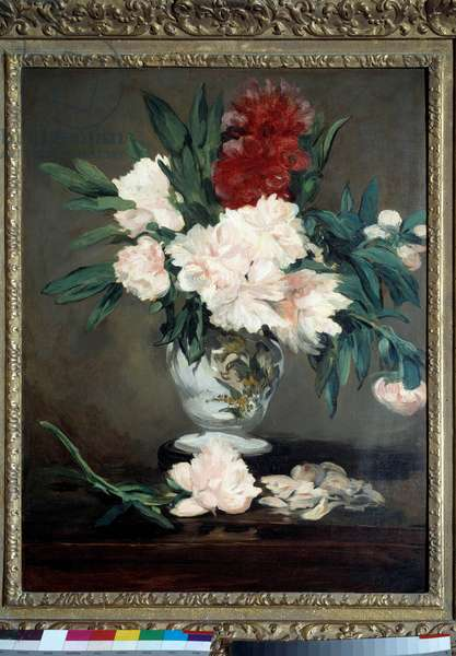 Vase of peonies on pieshower Painting by Edouard Manet (1832-1883) 1864 Dim. 0,93x0,70 m. Orsay Museum