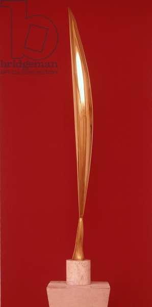 The Bird in Space, 1931-36 (sculpture)