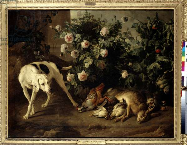 Dog keeping game near a bush of roses Painting by Francois Desportes (1661-1743) 1724 Sun. 1,07x1,38 m Paris, Musee du Louvre.