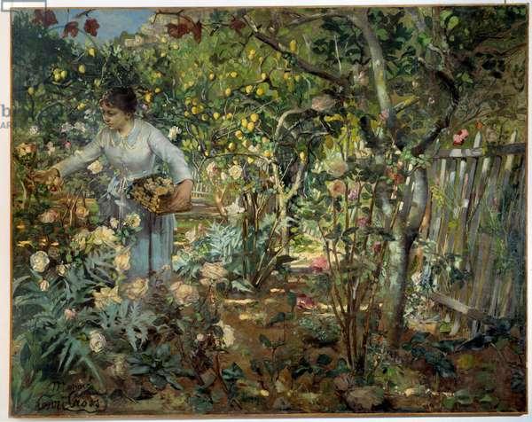 Garden of roses in Monaco Painting by Cross Henri Delacroix Dit Cross (Henri Edmond Cross) (1856-1910), 1884. Dim. 1,96 x 2,46 m. Douai, Musee de la Chartreuse