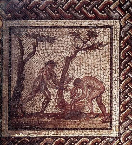 Gallo Roman Art: mosaic paving representing a rustic calendar. Scene of thatching. End 2nd, beginning of 3rd century after JC. From Saint-Romain-en-Gal (Rhone). Saint Germain en Laye, National Museum of Archeology