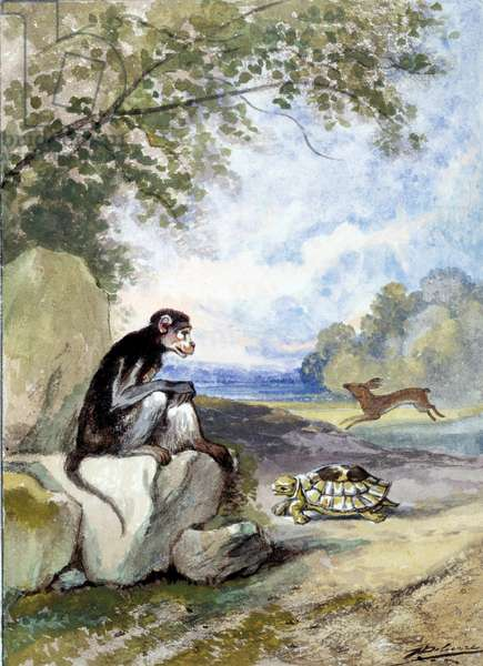 """Illustration of the fable """"The hare and the turtle"""""""" by Jean de La Fontaine. Watercolour by Auguste Delierre (1829-c.1890), 19th century. Chateau Thierry, Musee La Fontaine"""