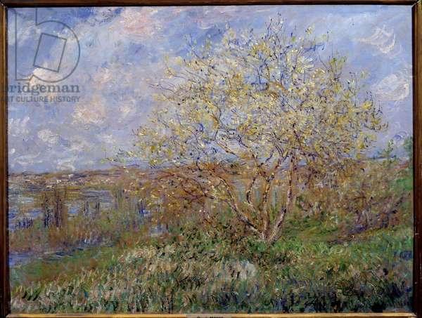 Spring Painting by Claude Monet (1840-1926) 1882 Dim. 0,60 x 0,79 m Lyon, Musee des Beaux Arts