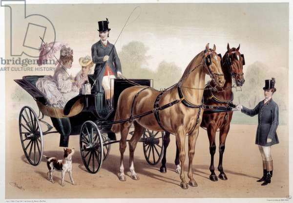 A horse carriage with Anglo-Norman horses Print by Albert Adam (1833-?) 19th century Paris, Musee Carnavalet