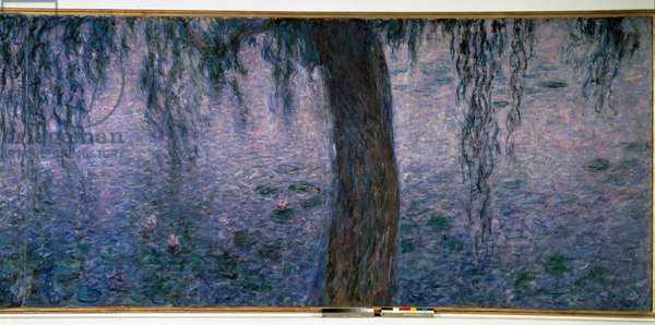Nympheas, bright morning with Triptych willows right part. Painting by Claude Monet (1840-1926) 1914-1926 Dim. 2 x 4.25 m. Paris. Orangerie Museum