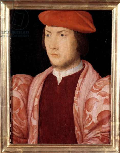 Portrait of Odet de Coligny, cardinal of Chatillon in 1534 (groin son of Gaspard de Coligny, Marechal of France and brother of Admiral Gaspard de Coligny) (1517-1571) around 1535 Painting of the French School of the 16th century. Dim. 0,32x0,23m. Versailles, Castles of Versailles and Trianon