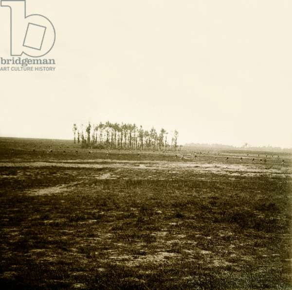 Stereoscopic glass plate on the First World War (1st, Iere, 14-18 or 1914-1918) (The First World War; WWI): In Champagne, Attack of a Battalion, Private Collection