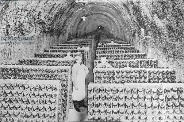 """Manufacture of Champagne: the stirring in a cellar """""""" Moet et Chandon"""""""" Photograph of the beginning of the 20th century. Private Collection"""