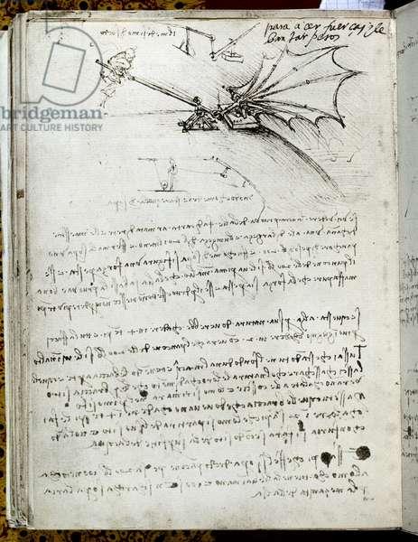 Wing training. Flying machine drawing. Manuscript by Leonard De Vinci (Leonardo da Vinci, 1452-1519), 16th century. Paris, Library of the Institute