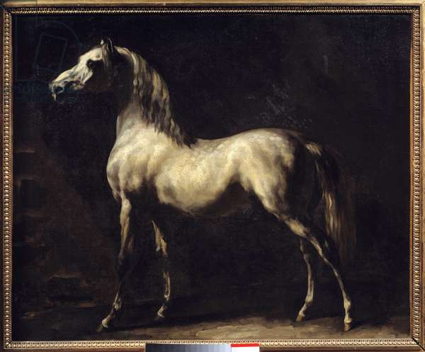 Study of a Horse Painting by Theodore Gericault (1791-1824) 19th century Sun. 0,58x0,72 m Rouen, Musee des Beaux Arts