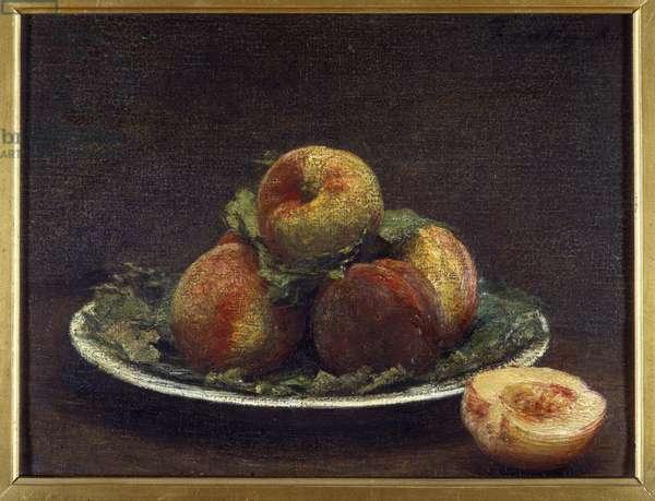 A plate of peches Painting by Henri Fantin Latour (Fantin-Latour, 1836-1904) 1880 Sun. 0,26x0,35 m Rouen, musee des Beaux Arts