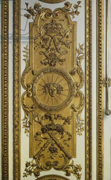 Doorwood of the Venus Salon with sun and sceptre. 17th century Versailles. Chateau Museum