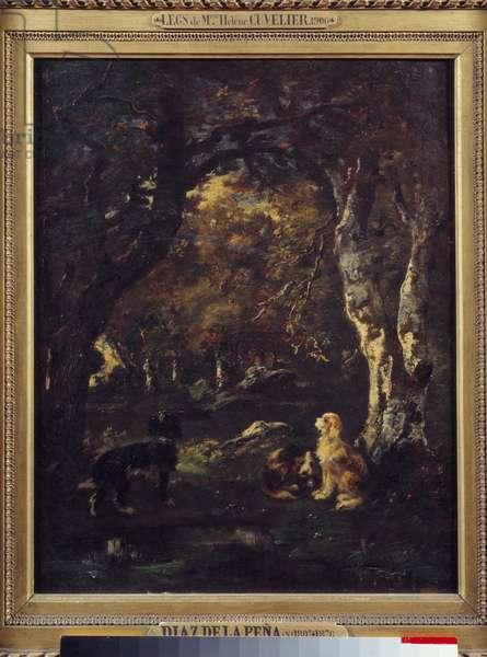 Dogs in the forest Painting by Narcissus Diaz de la Pena (1807-1876) (ec. de Barbizon) 1856 Sun. 0,5x0,4 m Paris, Musee du Louvre