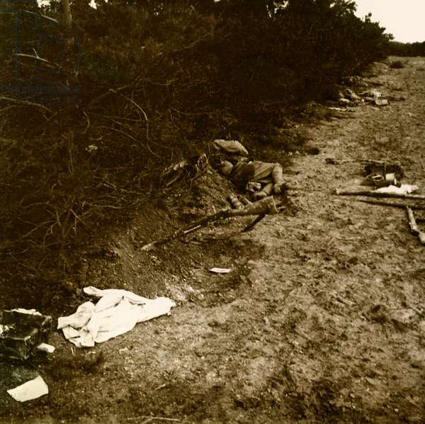 Stereoscopic glass plate on the First World War (1st, Iere, 14-18 or 1914-1918) (The First World War; WWI): Marne, 1914, French corpse, Private collection
