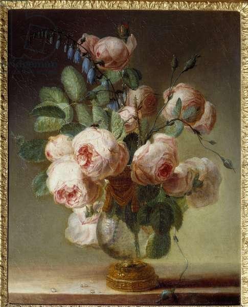 The flower vase A bouquet of peonies. Painting by Pierre Joseph Redoute (1759-1840) 19th century Sun. 0,46x0,37 m Rouen, Musee des Beaux Arts