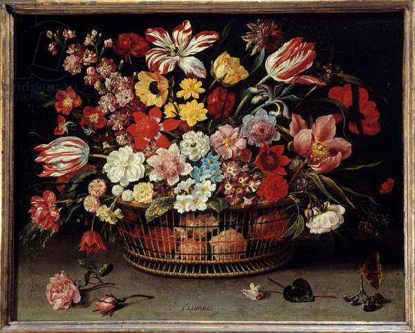 Fruit basket Painting by Jacques Linard (1600-1645), 17th century. Sun 0,48x0,6 m Paris, museee du Louvre