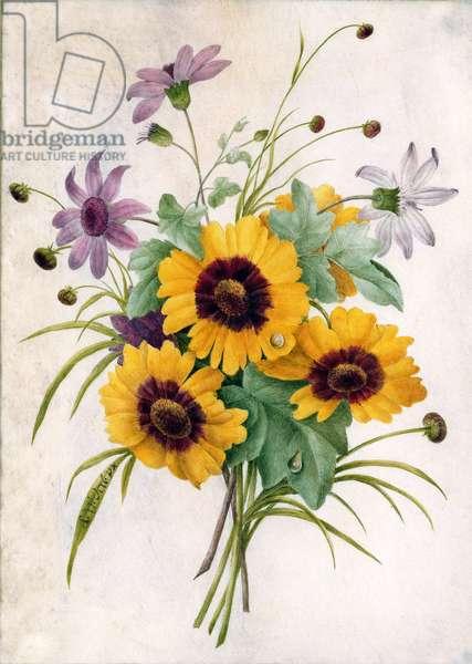 Still life with sunflowers (w/c on vellum)