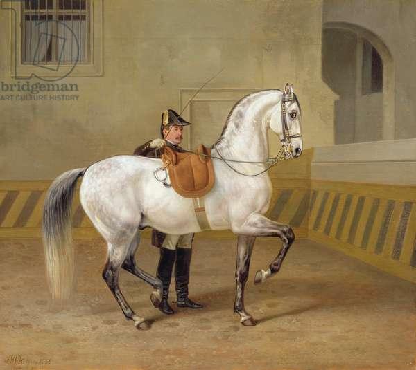 Man training a horse, 1856 (oil on canvas)