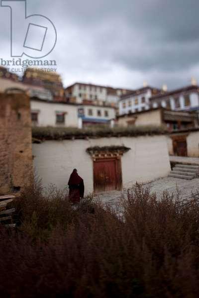 Monk, Shangri-La (photo)