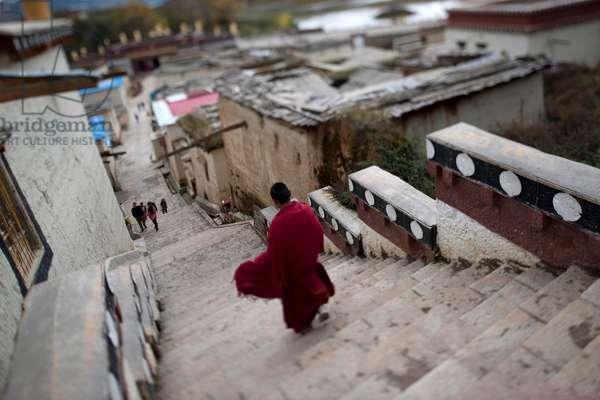 Novice monk, Shangri La, China (photo)