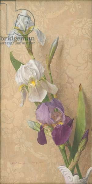 Irises, 1954 (tempera on gesso-prepared board)