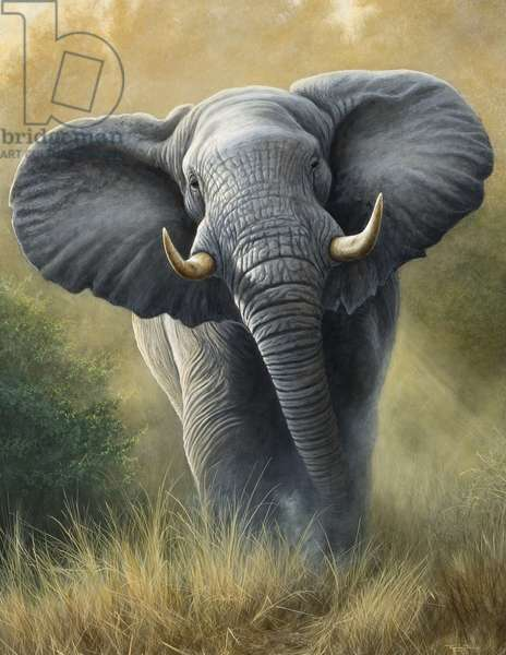 Right of Way - Elephant, 2007 (acrylic on board)