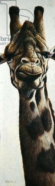 Giraffe, 1999 (acrylic on board)