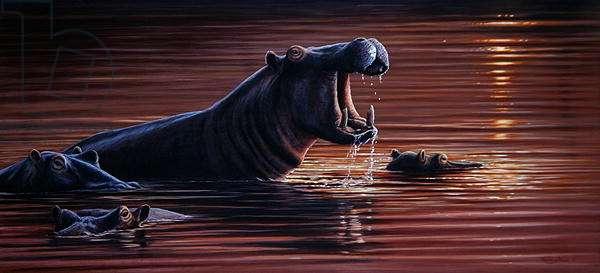 Hippo Pool, 2001 (acrylic on board)