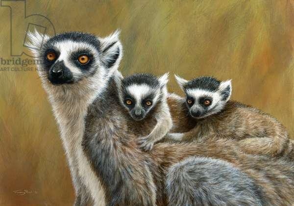 Family ride - ring-taied lemur, 2018, acrylic on board