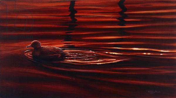 Widgeon, 1995 (acrylic on board)