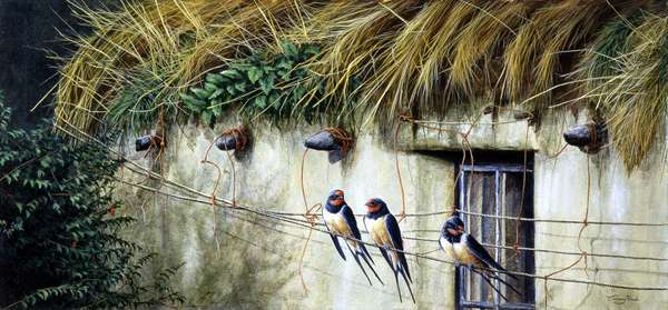 Old thatch cottage - swallows, 1992, acrylic on board