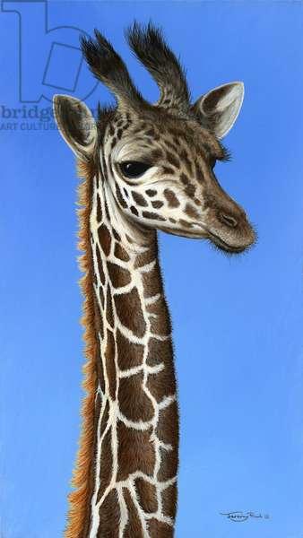 Young giraffe, 2013, acrylic on board