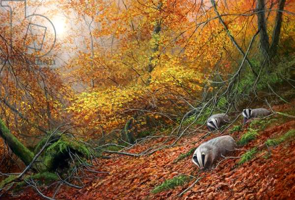Forest gold - badgers, acrylic on board, 2017