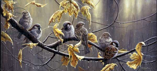Les Miserables - sparrows in the rain, 1995, acrylic on board