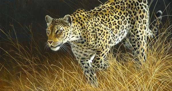 Intent - leopard, 2013, acrylic on board