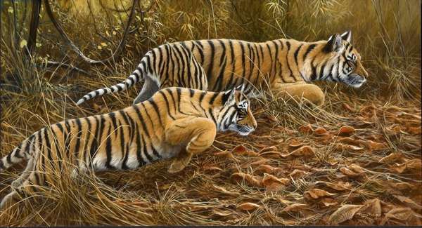 Hunting practice - Tiger cubs, 2006 (acrylic on board)
