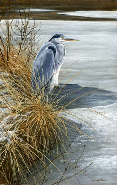 Winter heron, 2015, acrylic on board