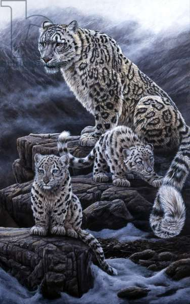 Snow Leopards, 1997 (acrylic on board)
