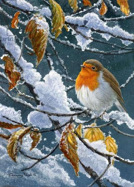 Winter robin, 2014, acrylic on board